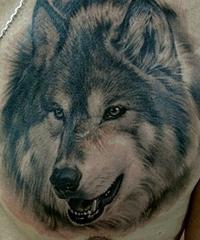 Значение татуировок волк