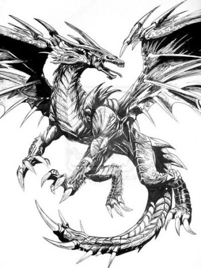 Эскиз тату с изображением дракона