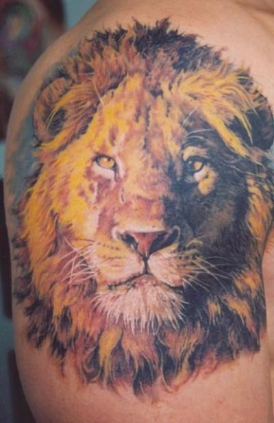 Значение тату львы значение тату
