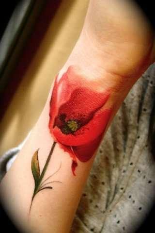 http://tattooinfo.ru/images/foto_cvetnaja_tatu_v_vide_cvetka_maka_na_predpleche.jpg