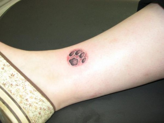 ... тату в виде лапки на щиколотке девушки: tattooinfo.ru/catalog/lapki/cvetnaja_tatu_v_vide_lapki_na_wikolotke...