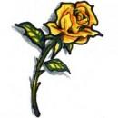 Желтой розы цветной эскиз татуировки