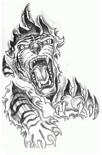 Эскиз тату с изображением тигра