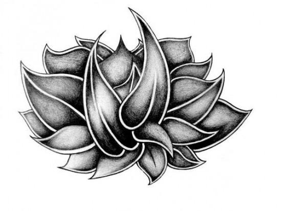 лотос татуировки эскизы: