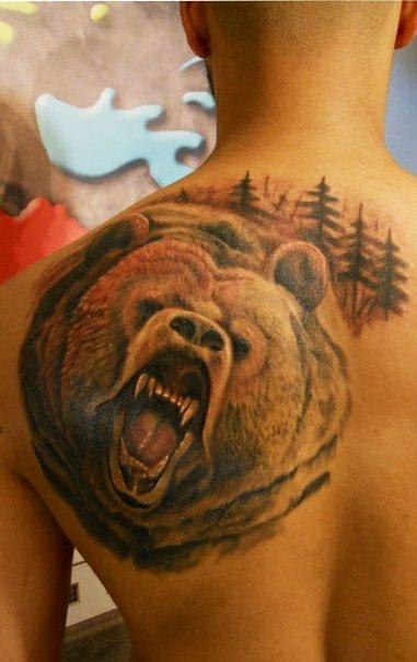 Тату медведи значение тату на лопатке