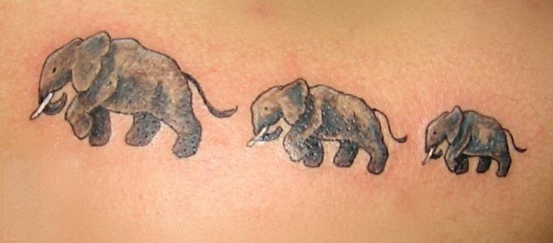 Значение тату слон на зоне