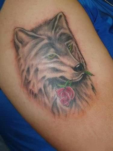 Тату в виде волка с розой на плече