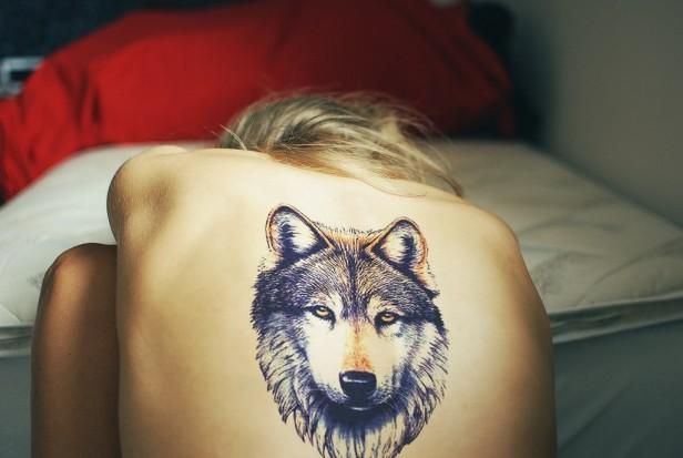 Тату волка на лопатке у девушке