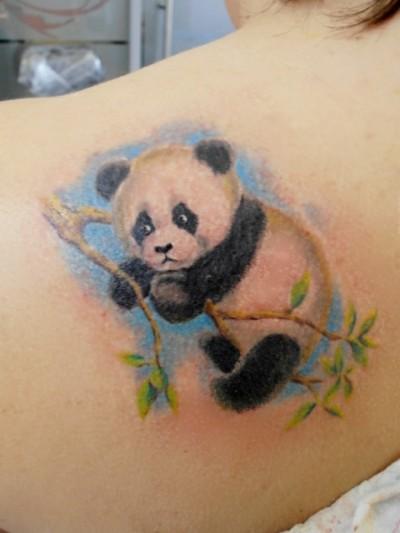 Татушка панда на ветке