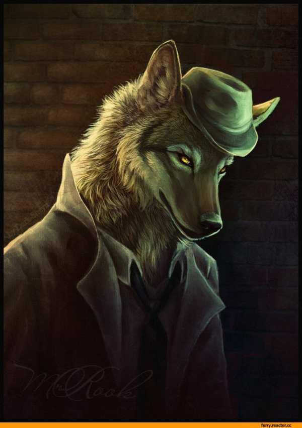 Воющий волк картинка – Ой!